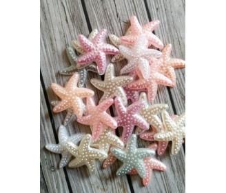 lot de 5 étoiles de mer