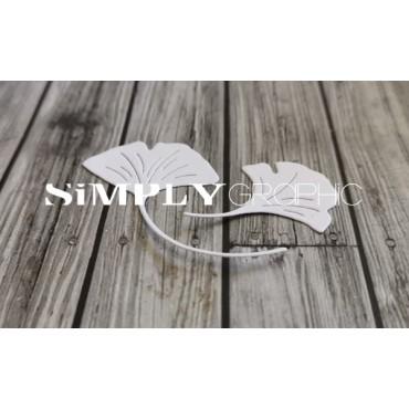 dies feuilles de ginkgo
