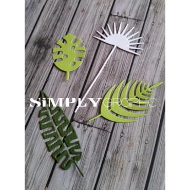 dies feuilles tropicales